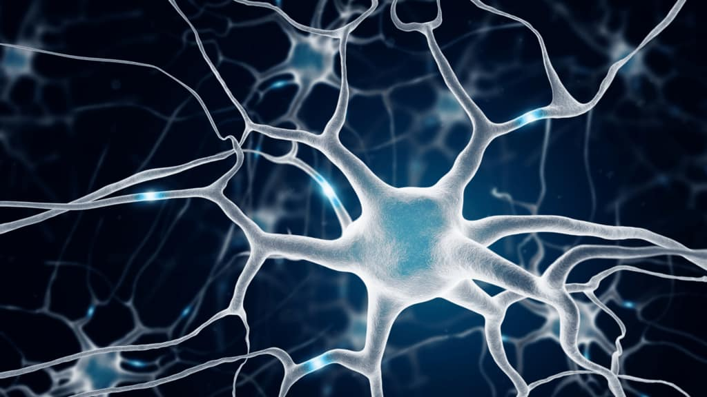 pain management nerve well life abq